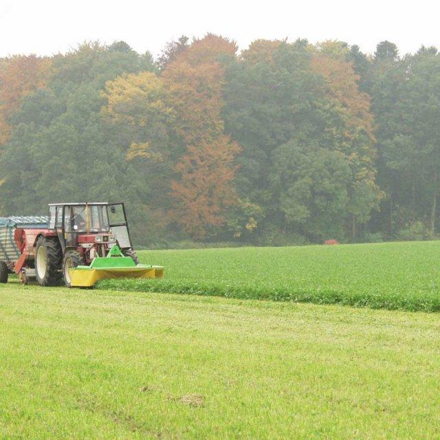 Herrmannsdorfer Landwirtschaft - Kleegrasernte