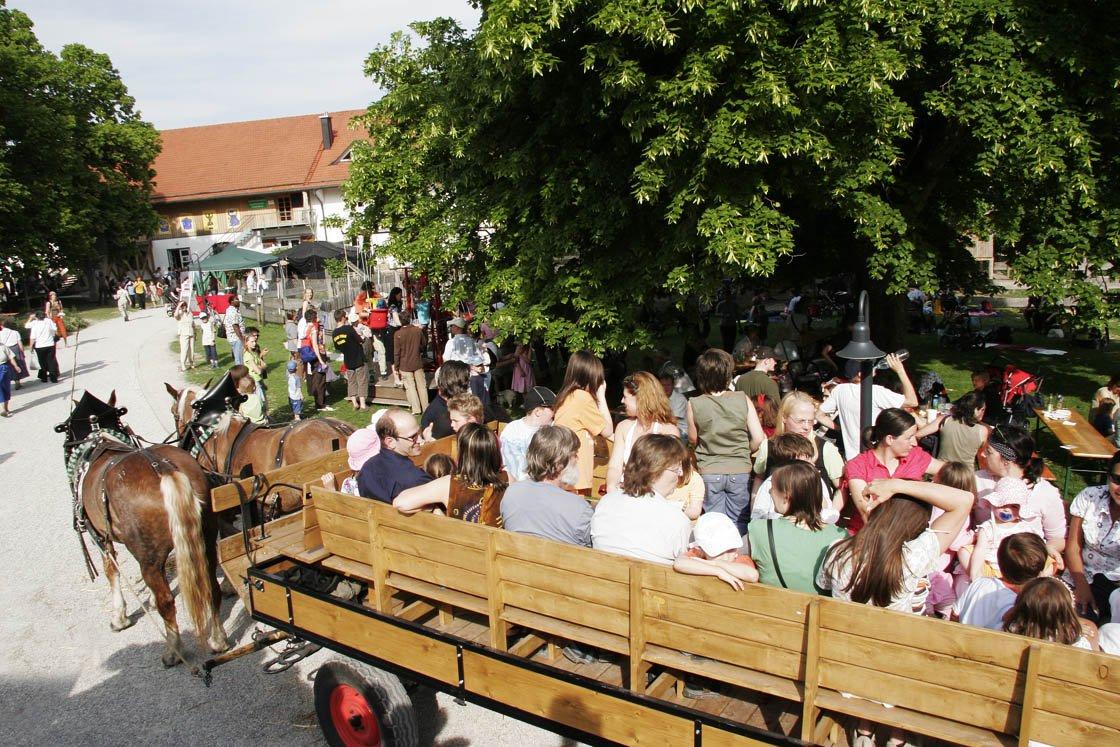 Kutschfahrt in Herrmannsdorf