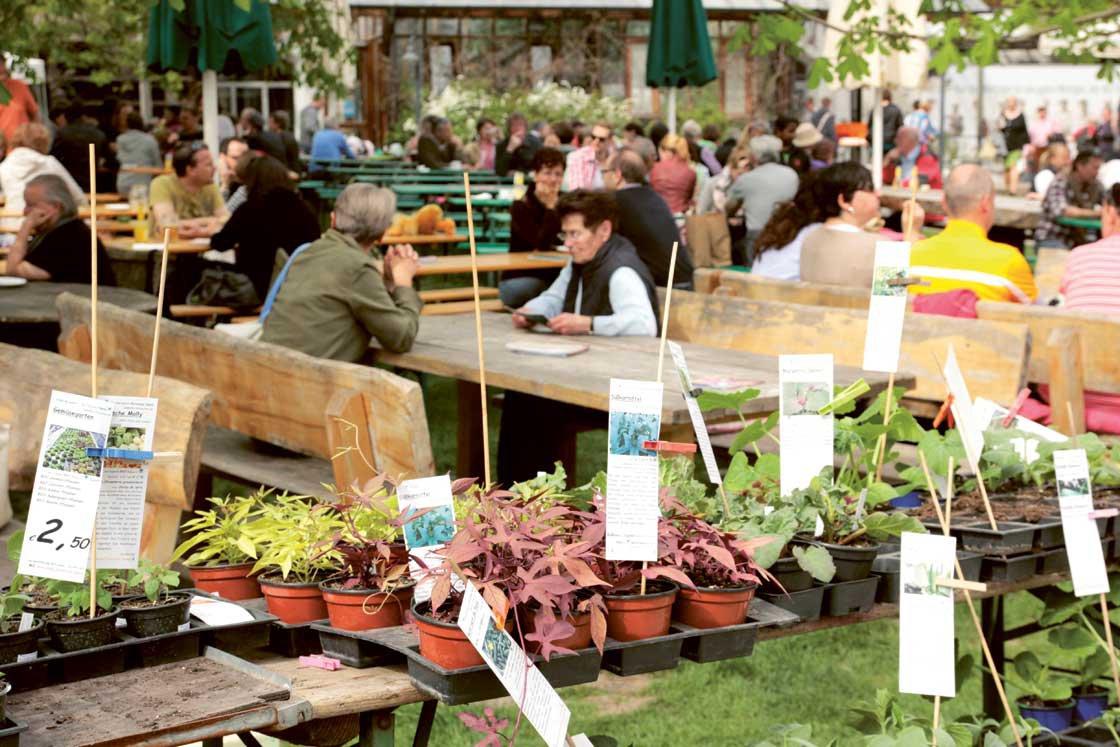 Gartenmarkt in Herrmannsdorf