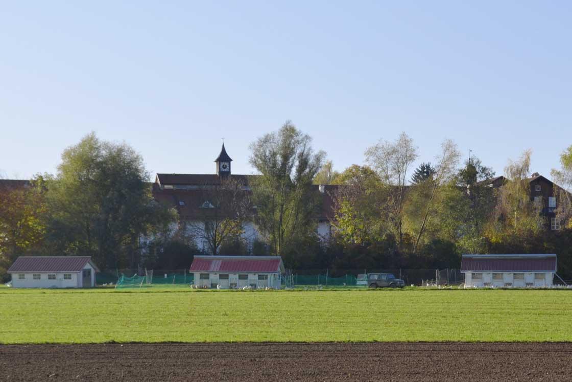 Frühling in Herrrmannsdorf